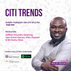#CitiTrends S05 Ep25: Making borderless payments a reality