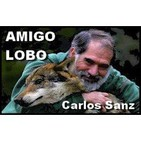 Entrevista a Carlos Sanz en Caza, Pesca y Naturaleza: Exposición Amigo Lobo en Villardeciervos (09/09/2017)