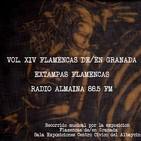 Vol. XIV Flamencas de/en Granada-Extampas Flamenca