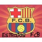 Estratos FCB