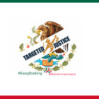 Targeted Individuals Mexico