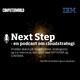 Next Step (3): Lemvigh-Müllers it-direktør om it-kontrakter, digitalisering og tiden efter corona