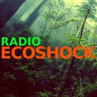 Radio Ecoshock: Extreme Heat #1