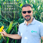 Agrolink - Podcast del Campo