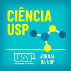 Ciência USP #01: Como o cérebro processa o trauma