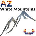 AZWMP - Community Shout - 03-26-20 - White Mountain Information