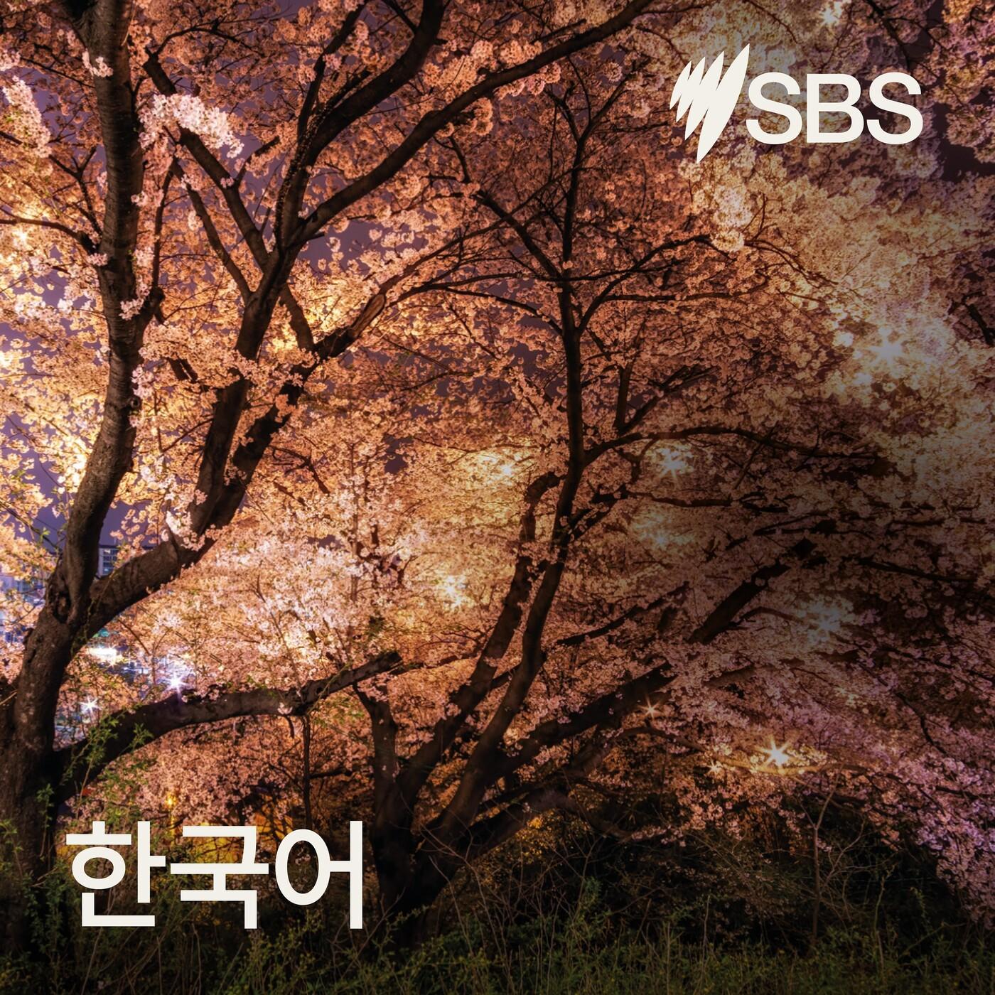 SBS News Outlines... 2020년 10월 20일 저녁 주요 뉴스