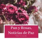 Pan y Rosas ,Noticias De Paz 2019-12-16