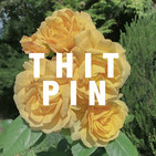 Introducing the Thitpin Podcast