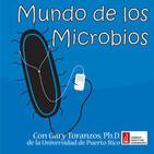 Mundo de los Microbios