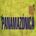 VOCES DE LA PANAMAZONÍA