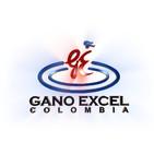 Platino GE Nolber Arango - Establecimiento de Metas