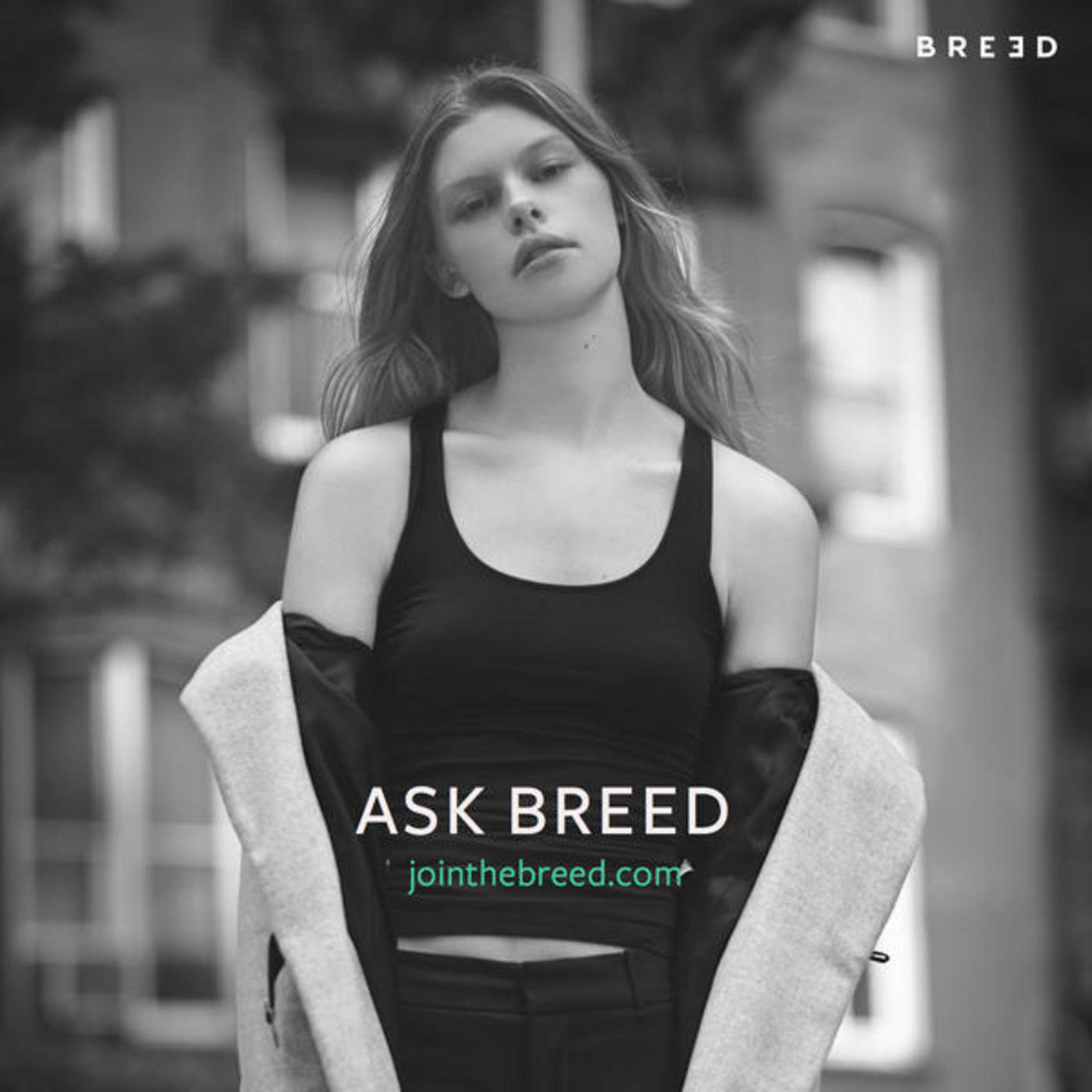 Breed Chats: Breed Instructor Tyler Mitchell