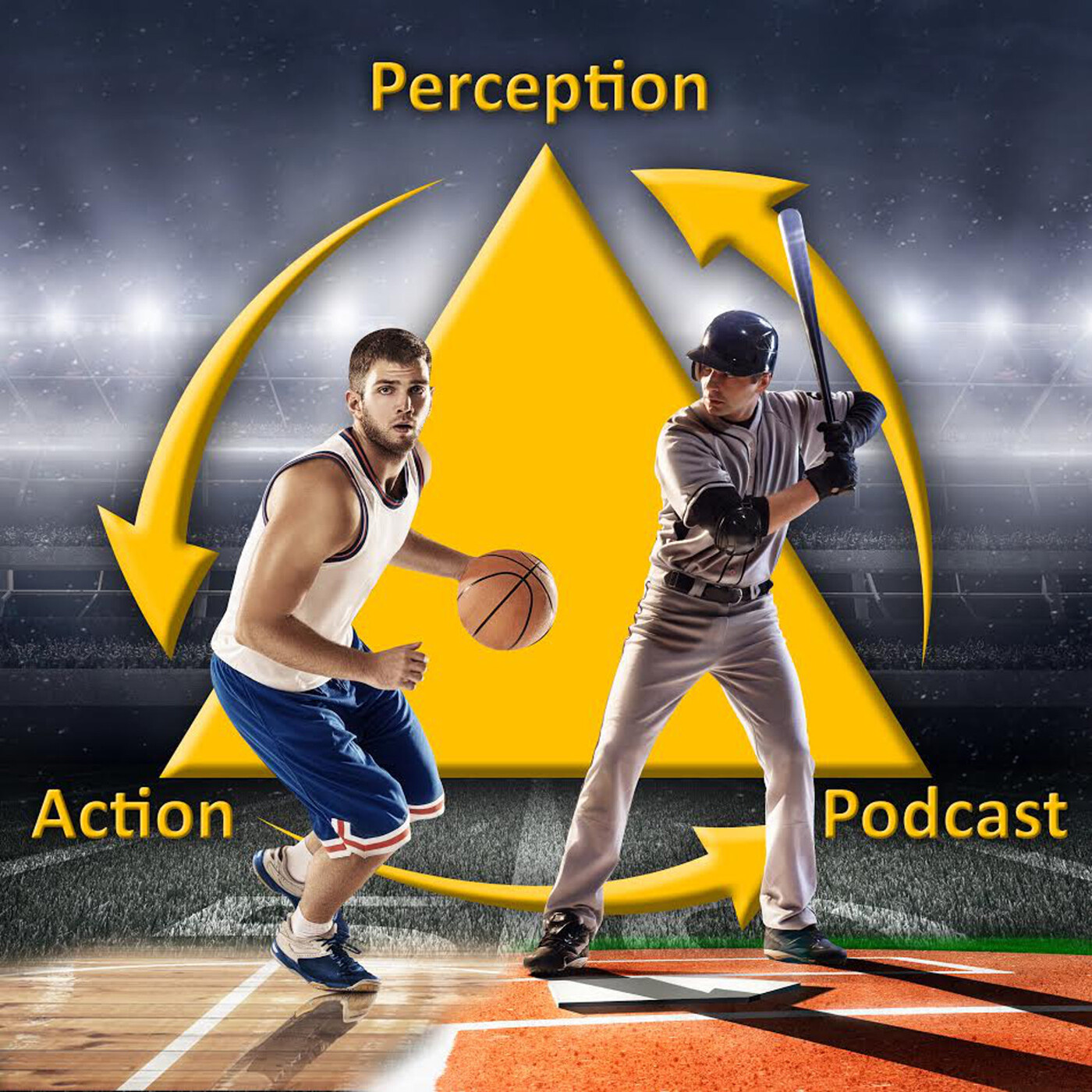 324 – An Ecological Approach to Sports Injury Prevention & Adaptation (Not Recovery)