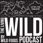 Episode 20 - Traveling and Eating