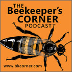 BKCorner Episode 166 - Justin Time