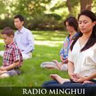 Falun Dafa, notícias e cultivo