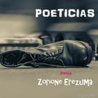 AUDIO LIBRO POETICIAS DE ZORIONE EREZUMA