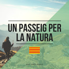Un passeig per la natura