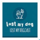 2013 Round-Up - Strakes - Lost My Dogcast 59