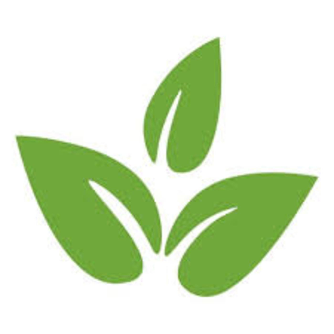 Proyecto: Hambre Cero/Agricultura/Mecatrónica
