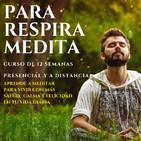 Curso Para, Respira y Medita