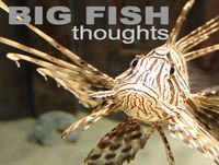 Big Fish Thoughts Podcast - 25/01/06