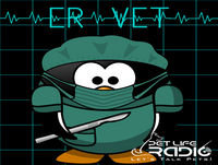 ER Vet - Episode 49 Having to Euthanize your Dog or Cat in the Veterinary ER - What Do I Need to Know?
