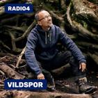 Sommer-tour #5: Rasmus og Catrines ådal 2:2