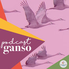 PODCAST GANSO