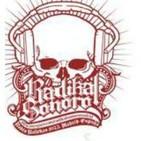 Radikal Sonoro Programa Radio