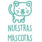 Nuestras Mascotas