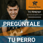 Episodio 119 - El perro que tira de la correa