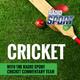 Radio Sport Cricket Podcast: NZ v England - Test 1, Day 2