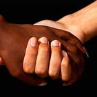 Connexió Intercultural