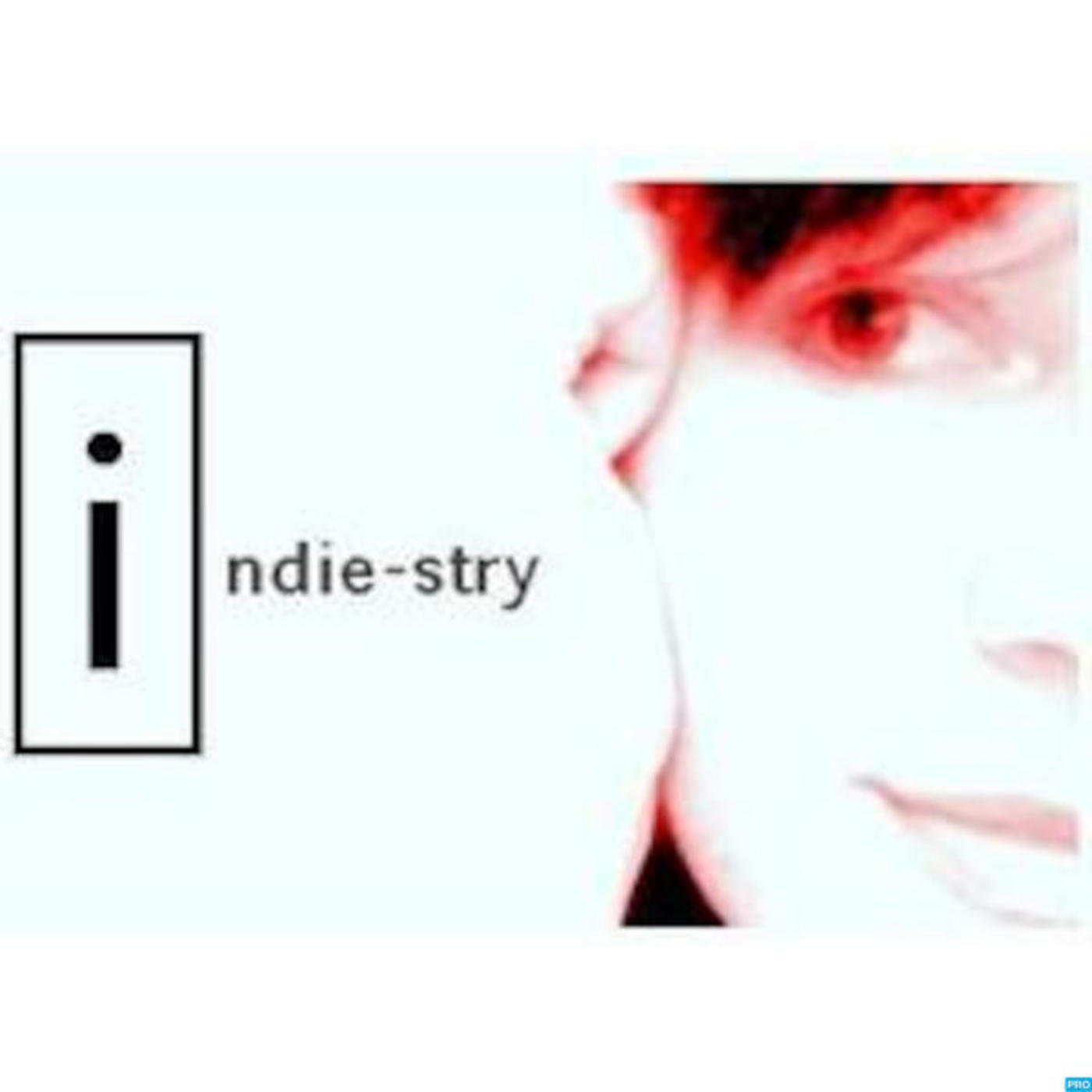 iNDIE-STRY™ Session