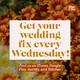 Creating Unique Wedding Entertainment Experiences Pt. 1