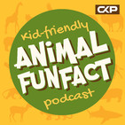 Animal Fun Fact of the Day - Episode 160 - Antlions
