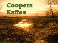 CK89: Coopers Serien Hall of Fame - Teil 3: 2012/2013