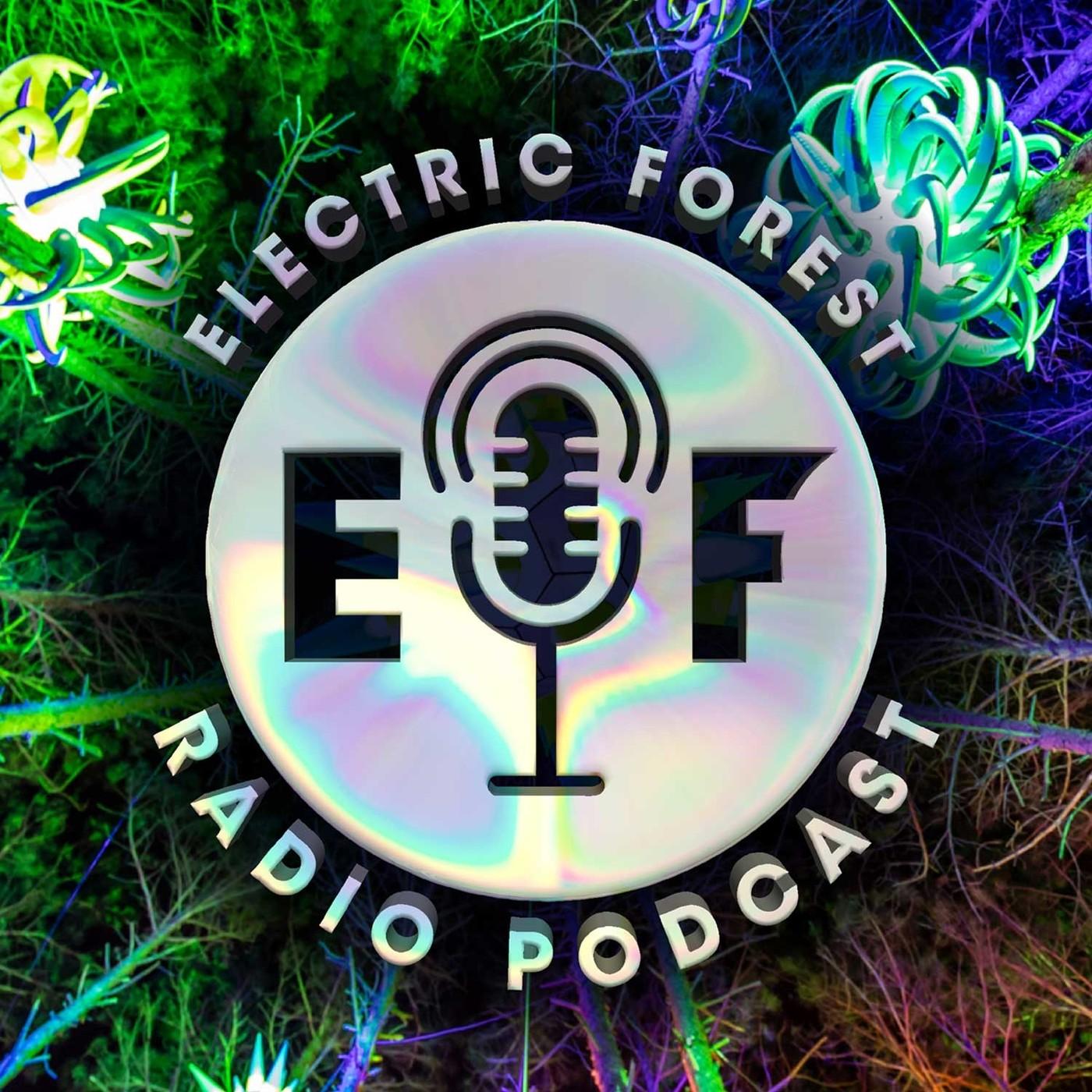 EF2019 Artist Live Set: STS9
