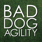 224: Defining YOUR Success in Dog Agility