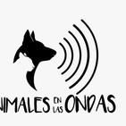 animales en las ondas 26 - 7 - 2016