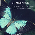 metamorphosis dia de muertos 23 de octubre de 2019