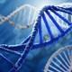 Semana 8 (2da parte): Biotransformación de Xenobióticos - Reacciones de Fase II