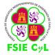 Entrevista a José Francisco Bernardos Gil, Secretario de FSIE CyL en COPE CyL