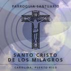 Homilía Dominical 506: La Pasión del Señor según San Lucas.Domingo de Ramos.