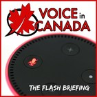 Voice in Canada - Easter Egg Commands 42