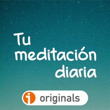 295. Colocarse en una actitud meditativa (Práctica de meditación)