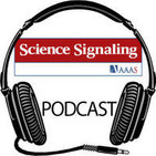 Science Signaling Podcast, 30 October 2012