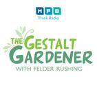 The Gestalt Gardener: Pick Me Up